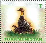 [Fauna of Turkmenistan, Typ HP]