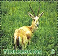 [Animals of Turkmenistan, Typ HS]