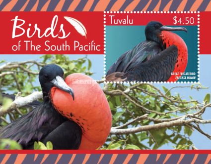 [Birds of the South Pacific, type ]