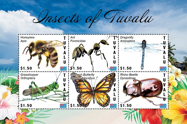 [Insects of Tuvalu, type ]