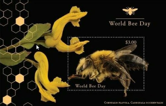 [Insects - World Bee Day, Typ ]