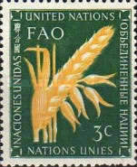 [Food and Agriculture Organization, Typ O]