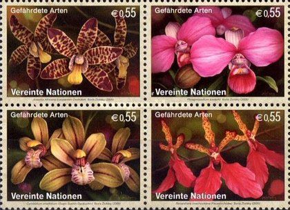 [Endangered Species - Orchids, Typ ]