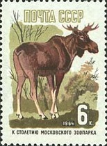 [The 100th Anniversary of Moscow Zoo, Typ CSZ]