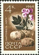 [Agricultural Crops, Typ CTG]