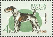 [Hunting and Service Dogs, Typ CXB]