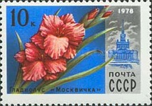 [Moscow Flowers & Buildings, Typ FKO]