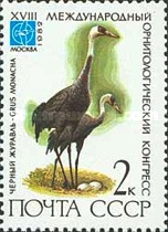 [The 18th International Ornithological Congress, Typ GCC]