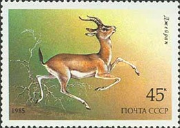 [Protected Animals, type GPY]