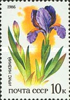 [Plants of Russian Steppes, Typ GRG]