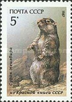 [Mammals Listed in USSR Red Book, type GWM]
