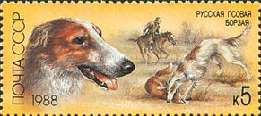 [Hunting Dogs, type HAY]