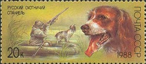 [Hunting Dogs, type HBB]