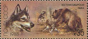 [Hunting Dogs, type HBC]