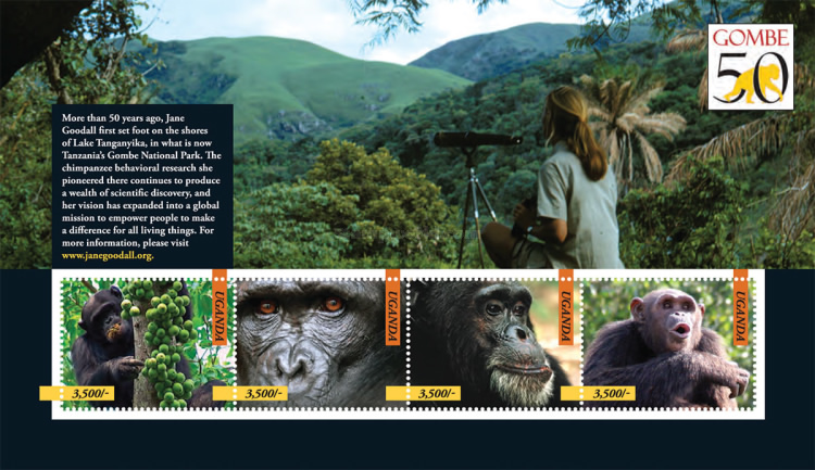 [Chimpanzees - The 50th Anniversary (2010) of the work of Jane Goodall, Typ ]
