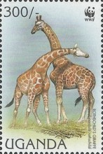 [Endangered Species - Rothschild's Giraffe, Typ BHG]