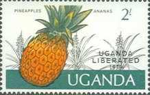[Liberation - Issues of 1975 Overprinted