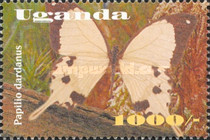 [Insects, Typ CHL]