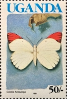 [Issues of 1989 with Blue Country Name - Butterflies, Typ TI1]