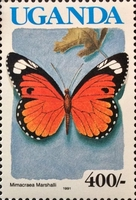 [Issues of 1989 with Blue Country Name - Butterflies, Typ TO1]