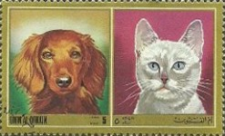 [Airmail - Dogs and Cats, тип YV]