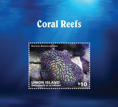 [Marine Life - Coral Reefs, type ]