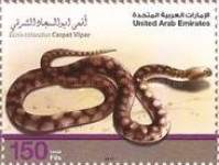 [Fauna - Desert Snakes in the U.A.R., type AOI]