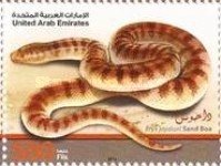 [Fauna - Desert Snakes in the U.A.R., type AOL]