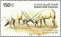 [Fauna - The Oryx in the UAE, type APH]