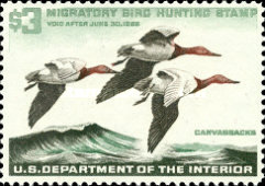[Department of the Interior Duck Stamps - Canvasbacks, Typ AA]