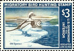 [Department of the Interior Duck Stamps - Oldsquaw Ducks, type AC]
