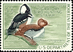 [Department of the Interior Duck Stamps - Hooded Mergansers, Typ AD]
