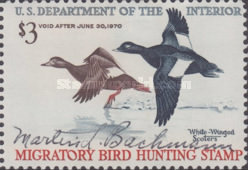 [Department of the Interior Duck Stamps - White-winged Scoters, Typ AE]