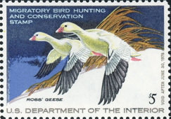 [Department of the Interior Duck Stamps - Ross' Geese, Typ AM]