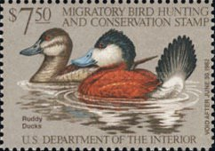 [Department of the Interior Duck Stamps - Ruddy Ducks, type AQ]