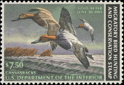 [Department of the Interior Duck Stamps - Canvasbacks, type AR]