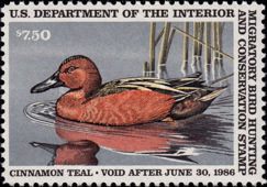[Department of the Interior Duck Stamps - Cinnamon Teal, Typ AU]
