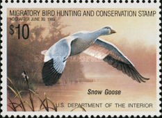 [Department of the Interior Duck Stamps - Snow Goose, Typ AX]