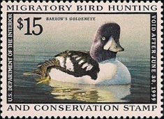 [Department of the Interior Duck Stamps - Barrow's Goldeneye - Self-Adhesive, Typ BH]