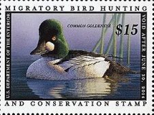 [Department of the Interior Duck Stamps - Common Goldeneye, type BW]