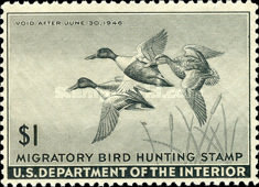 [Department of the Interior Duck Stamps - Northern Shovelers, Typ G]
