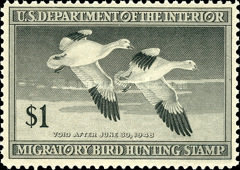 [Department of the Interior Duck Stamps - Snow Geese, type I]