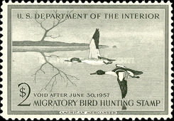 [Department of the Interior Duck Stamps - Common Mergansers, Typ R]