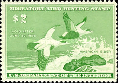 [Department of the Interior Duck Stamps - Common Eiders, Typ S]