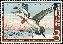 [Department of the Interior Duck Stamps - Northern Pintails, Typ X]