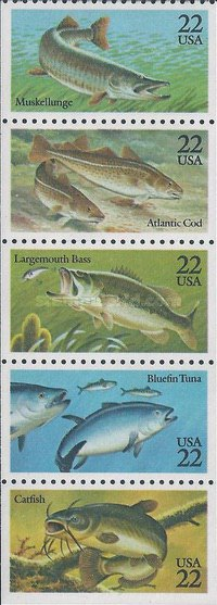 [Fish Booklet Issue, Typ ]