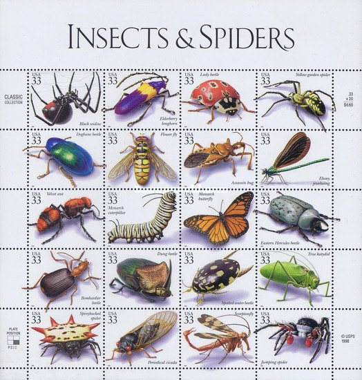 [Insects and Spiders, type ]