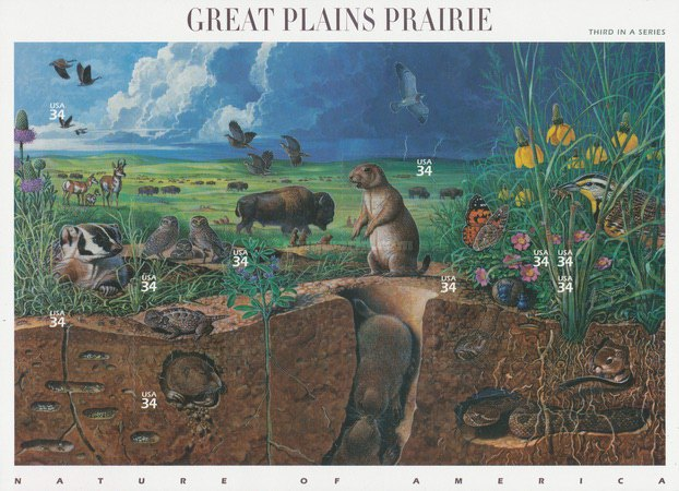[Nature of America - Great Plains Prairie, Typ ]