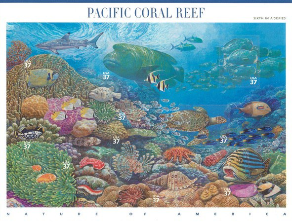 [Nature of America - Pacific Coral Reef, Typ ]