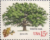 [American Trees, Typ AST]